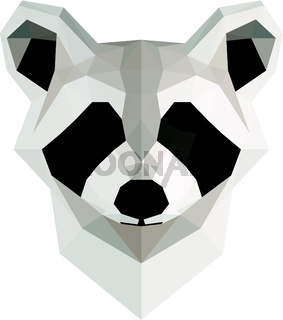 Low poly illustration. Raccoon