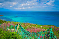 Green net fence on the Cornish coast