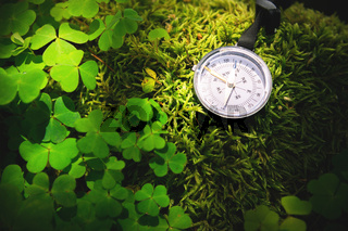Close up handmade wooden compass, tree shadows on green nature grass ground. holiday adventure in forest. Compass telling direction. Abstract and art vintage background
