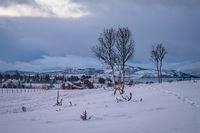 Mountain winter landscape in Norway