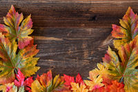 Colorful Leaves Autumn Decoration, Brown Wooden Background