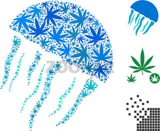 Jellyfish Composition of Hemp Leaves