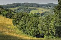 Odenwald Landschaft bei Wald-Michelbach