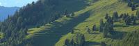 Forest and hills in Obermutten, Switzerland.