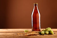 Close up brown beer bottle, hops, barley on table
