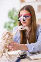 Student examining animal skeleton in classroom