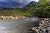 Khichdi river, Corbett Tiger Reserve, Uttarakhand , India.