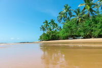 Paradise sandy beach with sunny day behind