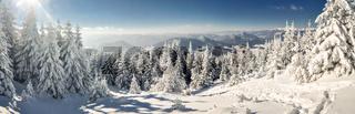 Idyllic winter panorama