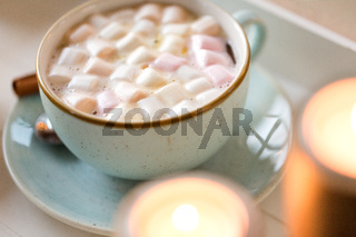 close up of hot chocolate with marshmallow