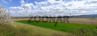 Panorama einer Ebene mit landwirtschaftlich bewirtschafteteten Flächen im Frühjahr