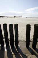 Küstenschutz durch hölzerne Buhnen am Sandstrand