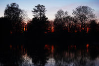 sunset over lake with silhouette of bare trees