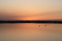ein Tag geht zu Ende... idyllischer Sonnenuntergang am See * Burgenland, Österreich *