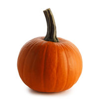 One orange pumpkin