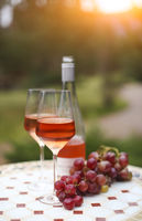 Two glasses and bottle of rose wine in autumn vineyard on marble table