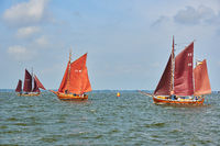 annually traditional Zeesboat regatta in Bodstedt nearby Fischland Darss Zingst on 2016-09-03