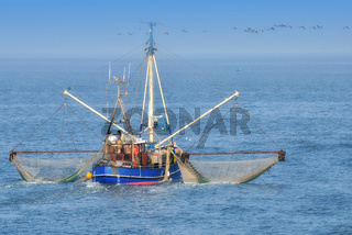 Krabbenkutter auf der Nordsee,Niedersachsen,Deutschland