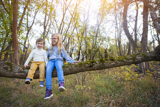 Little brother and his sister sitting on the tree in the fall
