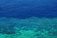 coral reef and depth