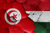 flags of Tunisia and Hungary painted on cracked wall
