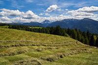 Heuernte auf der Rodenecker Alm in Südtirol