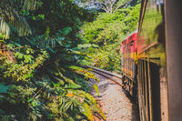 The Panama Canal Railroad train driving from Panama City to Colon