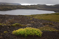 IS_Snæfellsnes_Land_02.tif
