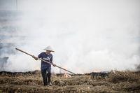 Vietnam Crop Burning