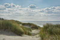 Nordseekueste in Holland 4