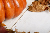 High angle shot of Pumpkin with dry maple and oak leaves nuts on white wooden table with space for your text