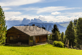Berghütte und Almwiese in den Alpen, cottage and meadow in the alps