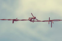 Barbed wire with sky background