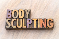 body sculpting word abstract in wood type