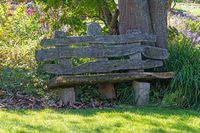 Old weathered wooden park bench
