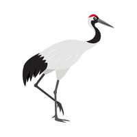 Friendly cute red-crowned or Japanese crane icon, colorful wild bird