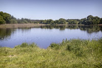 Large beautiful lake, with banks overgrown with forest.