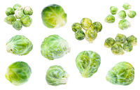 various fresh and frozen Brussels sprouts isolated