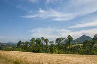 Landschaft Naturpark Pfälzerwald, im Hintergrund der Trifels