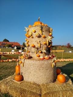 Herbsttag am Feldberg