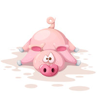 Cute, funnny, crazy pig characters. Symbol of the year 2019.