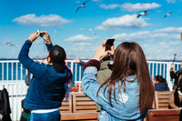 Man and woman take pictures of birds
