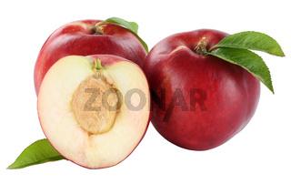 Nektarine Nektarinen Frucht Früchte Obst Freisteller freigestellt isoliert