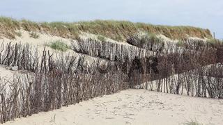Faschinen zum Dünenschutz an der Nordseeküste