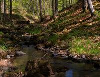Little german canyon at the mountain Rhoen