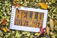 Hello November greeting card