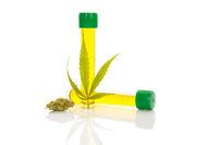Marijuana bud, leaf and CBD oil.