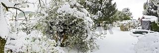 Verschneiter Garten nach einem späten Wintereinbruch im Frühling