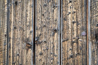 barn wood background and texture