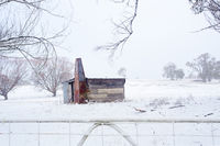 Ramshackle rustic shack in snowy rural scene